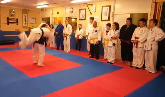 Wythall Jujitsu